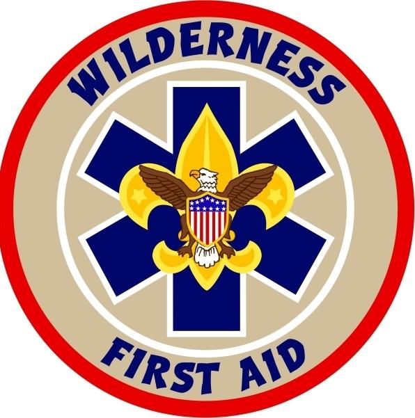 BSA Wilderness First Aid